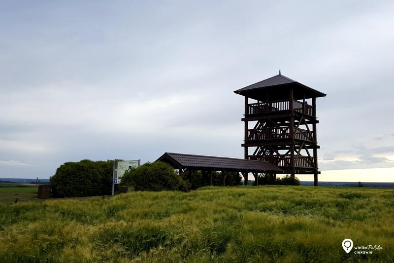 wieża widokowa, wielkopolska atrakcje, ciekawe miejsca w wielkopolsce, szlak piastowski