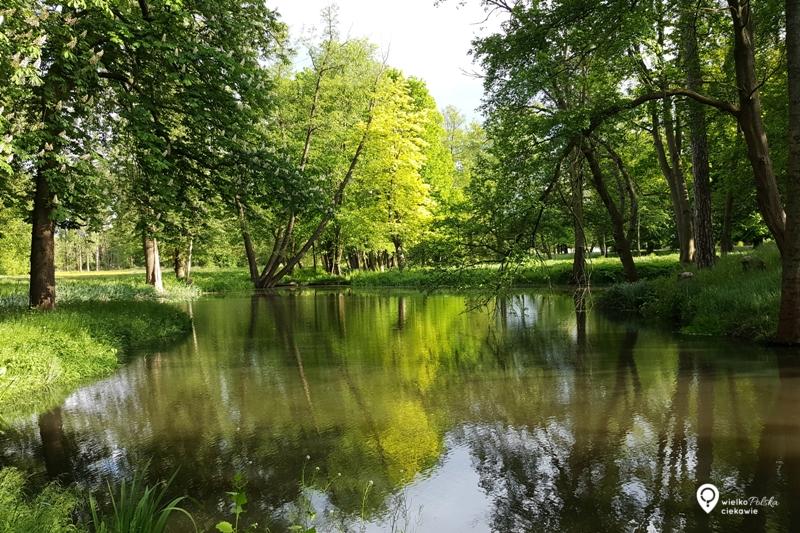Będlewo, pałac niedaleko Poznania, wielkopolska atrakcje,
