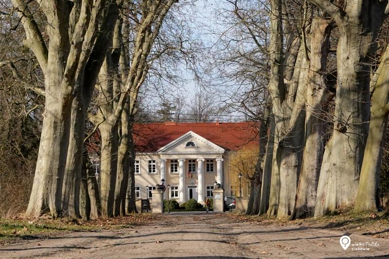 kopaszewo, pałace w wielkopolsce, pomnik przyrody, aleja drzew, ciekawe miejsca w wielkopolsce,