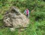 głaz narzutowy, kwiryn, eratyk, pomnik przyrody
